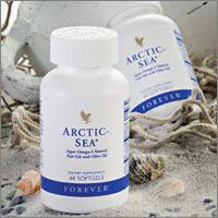 Arctic Sea Forever