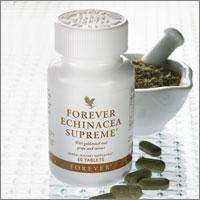 Forever Echinacea Suprême