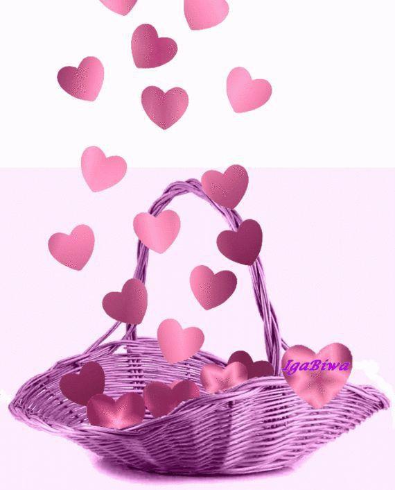 http://images.onlc.eu/lysdesvalleesNDD//127961461759.jpg