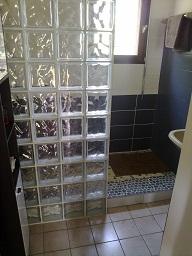 grand espace douche avec mur en carreaux de verre