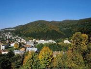 http://images.onlc.eu/slovakiadetenteNDD//125450999780.jpg
